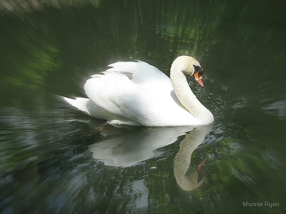 Swan Song by Monnie Ryan