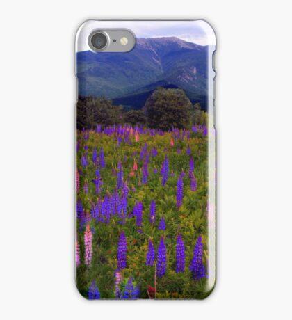 Lupine Field in the Franconia Range iPhone Case/Skin