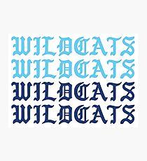 Wildkatzen Wildkatzen Wildkatzen Wildkatzen Fotodruck