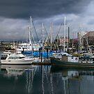 Victoria inner harbour by VickiOBrien