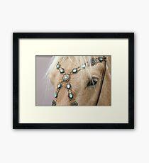 Equine Jewels Framed Print