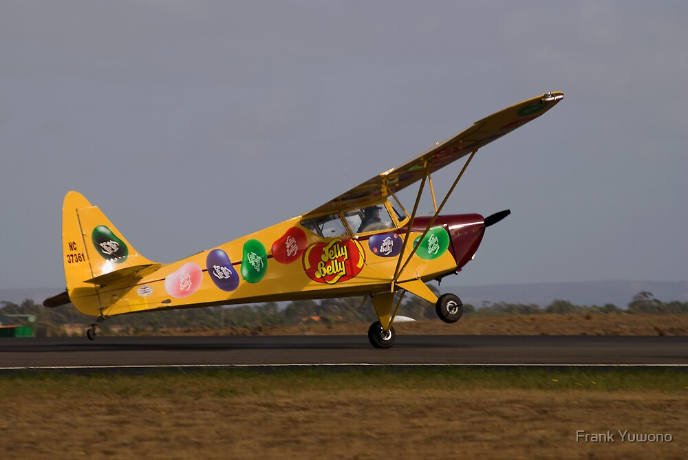 Fake Landing by Frank Yuwono