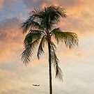 5:57 PM Hawaii Time by Alex Preiss
