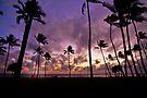 6:29 PM Hawaii Time by Alex Preiss