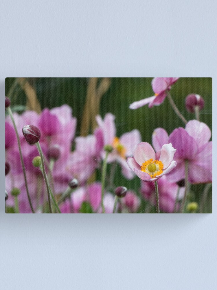 Alternate view of Anemone Canvas Print