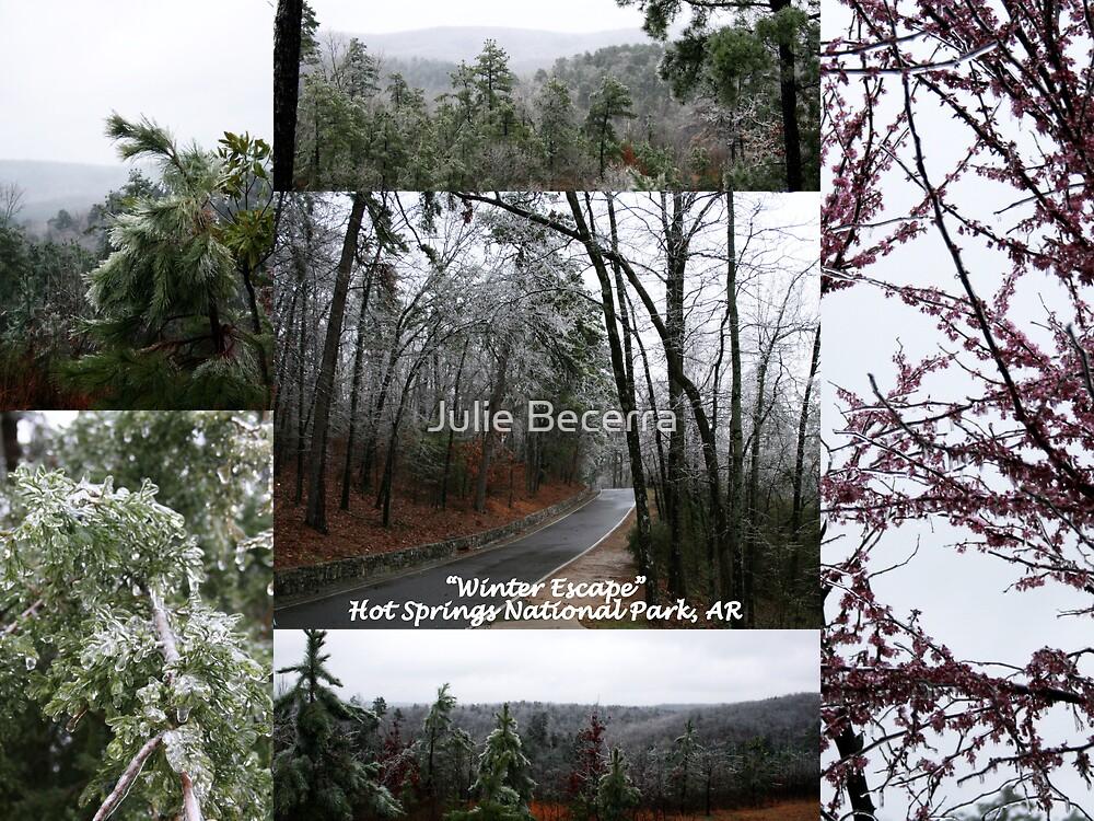 Winter Escape by Julie Becerra