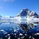 Amazing Antarctica by Karen Stackpole