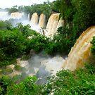 Multiple Falls of Iguazu by Karen Stackpole