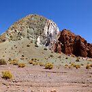 Atacama Desert by Karen Stackpole