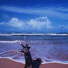 Cerulean blue by Chamika Amarasiri