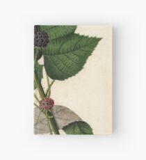 Vintage Malerei von Brombeeren Notizbuch