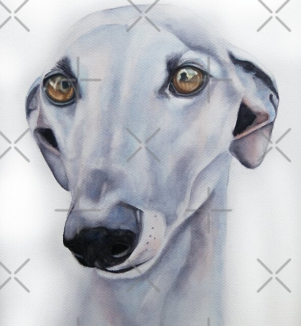 Greyhound - A loving soul by Tanja Kooymans
