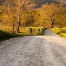 Country Road by Susan Gottberg