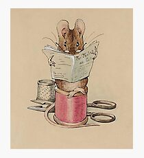 The Tailor Mouse, Beatrix Potter, Frontispiece. Photographic Print