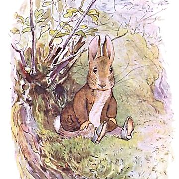 Benjamin Bunny, Beatrix Potter,  by TOMSREDBUBBLE