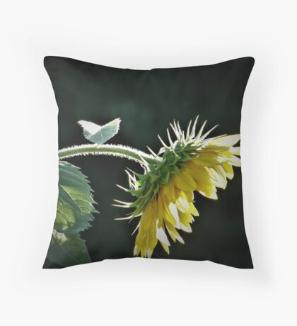 Bowing Sunflower Throw Pillow