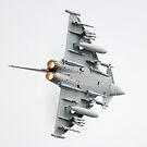 BAE Typhoon. by Aviationimage