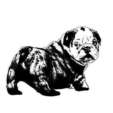 Bulldog Stencil by GraphXninja