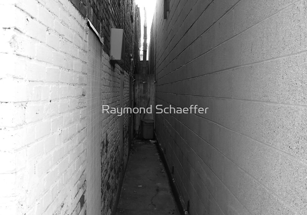 The Space Between by Raymond Schaeffer