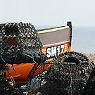Hiding behind the Lobster Pots by Mark Chapman