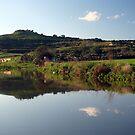 A look at Mtarfa from Chadwick lakes by Elvio Spiteri