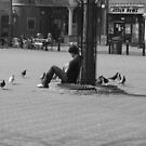 The Pigeons by jomfix