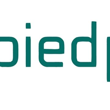 Pied Piper Logo New Season 5 Silicon Valley by SenorRickyBobby