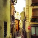 Toledo Morning Mysts by Ted Byrne