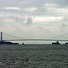 Brooklyn Bridge, New York by Bev Pascoe