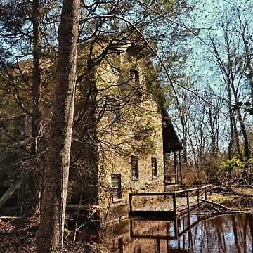 The Old Mill In The Countryside de lanrophot