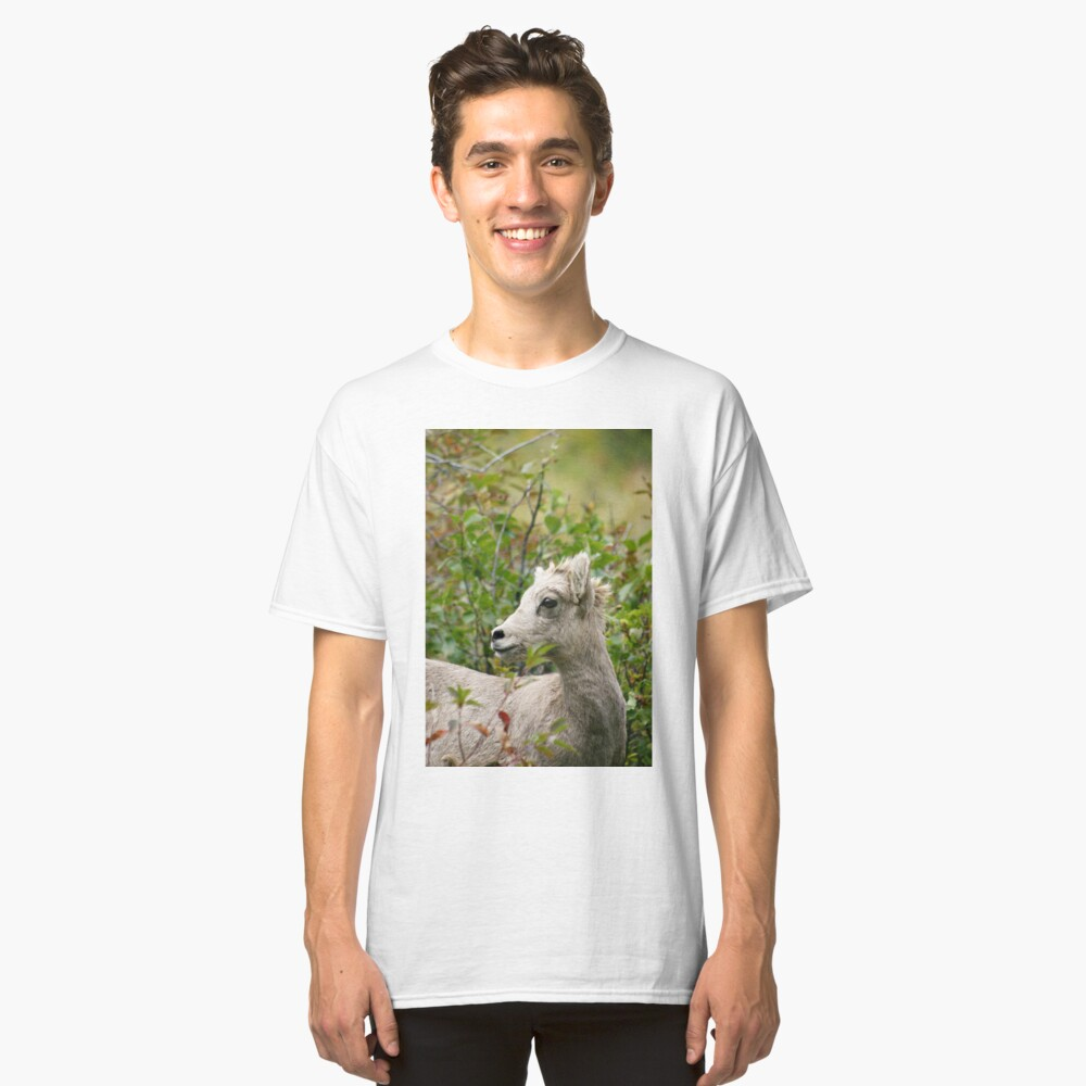 Juvenile Rocky Mountain Sheep Classic T-Shirt Front