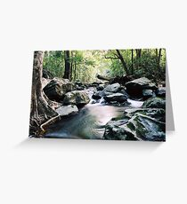 Claudie River, Cape York Greeting Card
