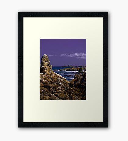 u1 Framed Print