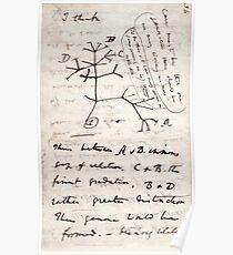 Ich denke - Charles Darwin 1 Poster