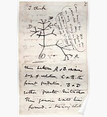 Póster Yo pienso - Charles Darwin 1