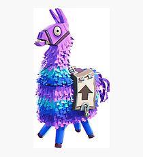 Fortnite Llama Pinata 3D Photographic Print