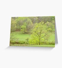 Pastel Spring In The Ozarks  Greeting Card