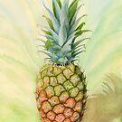 Costa Rican Pineapple (watercolour on paper) by Lynne Henderson