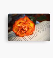Love of Books Canvas Print