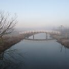 BRIDGE IN MORNING FOG by Johan  Nijenhuis