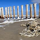 Beachcombing by Adri  Padmos