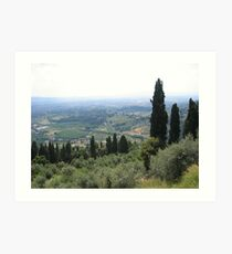 View from Fiesole Art Print