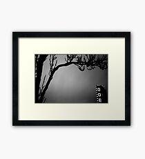 ode to winter limbs Framed Print