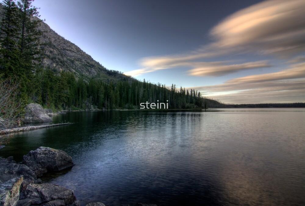Bank of Jenny Lake by steini