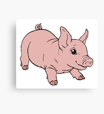 Playful Baby Pig Canvas Print