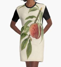 Vintage Illustration of a Peach Branch  Graphic T-Shirt Dress