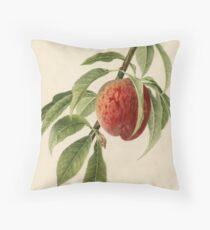 Vintage Illustration of a Peach Branch  Floor Pillow