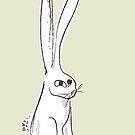 Iz rabbit by Zern Liew