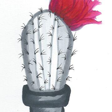 Cactus Flower by Danigeheb