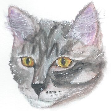 Grey Cat Watercolor by Danigeheb